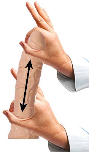 Cviky na penis - Zvětšení objemu 1